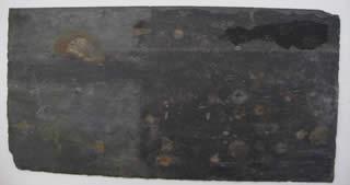 ahinney-slate